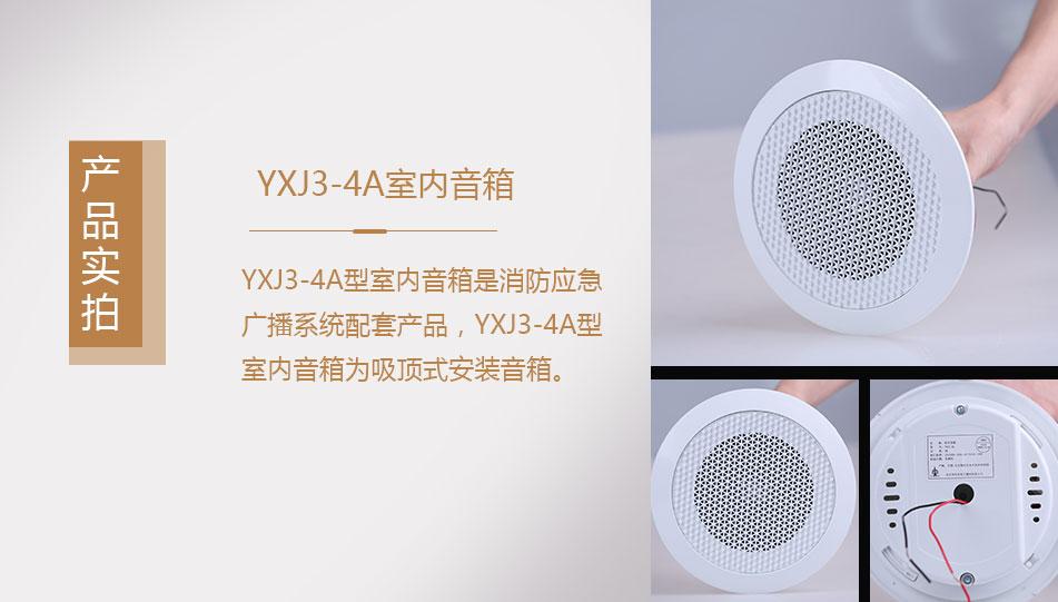 YXJ3-4A室内音箱实拍图