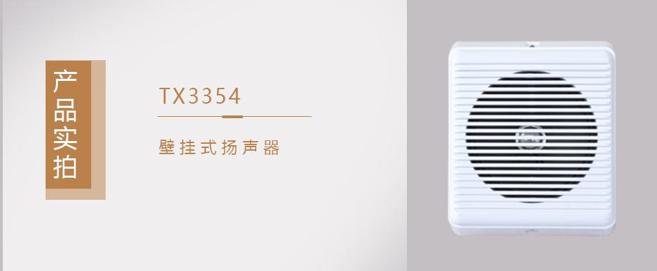 TX3354壁挂式扬声器实拍